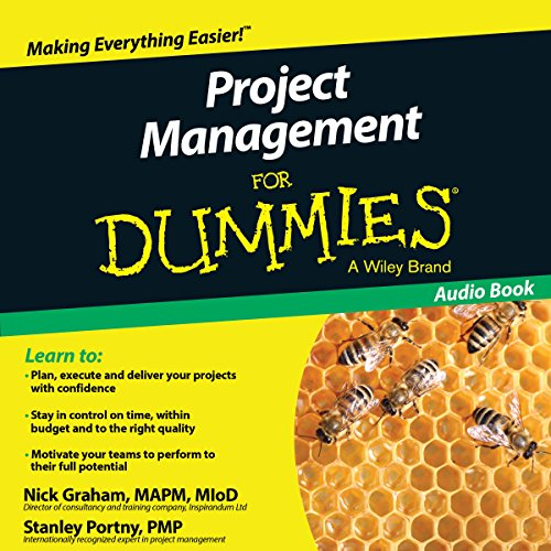 project-management-for-dummies-uk-edition