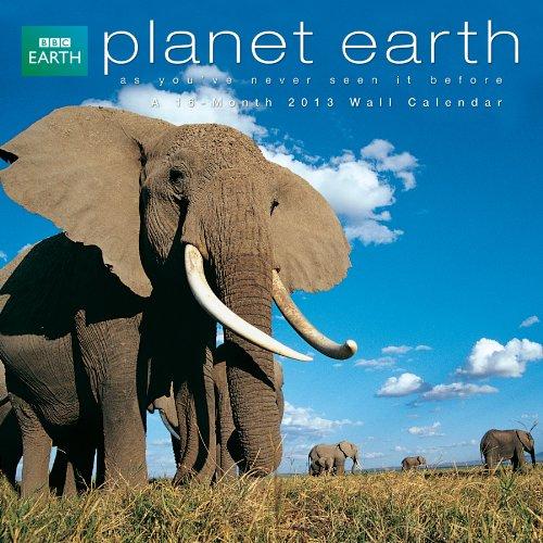Planet Earth  2013 Wall Calendar
