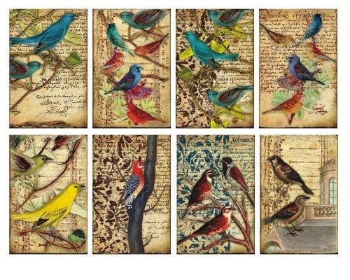paper-moon-quality-scrapbooking-paper-x-8-sheets-7cm-x-108cm-birds