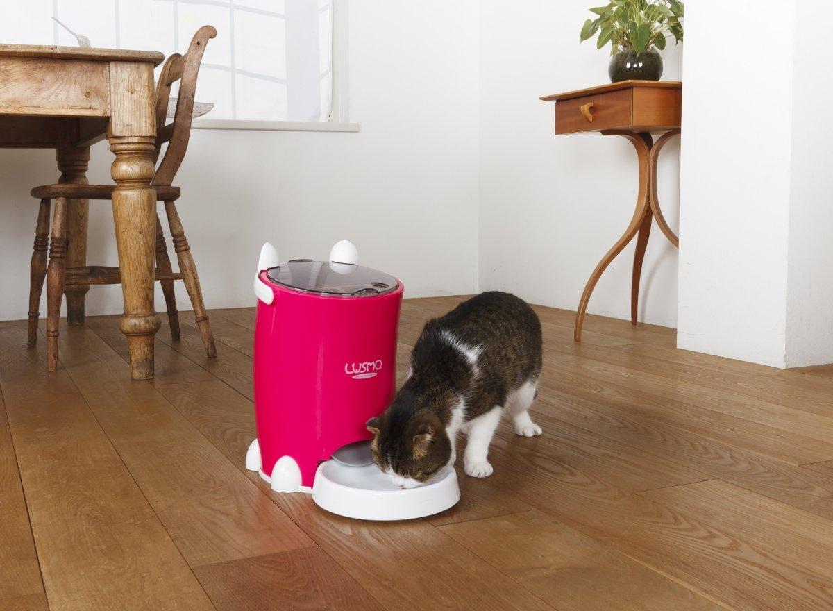 programmable cat feeder amazon Lusmo Automatic Pet Feeder buy