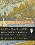 img - for Beside the Fire: A Collection of Irish Gaelic Folk Stories book / textbook / text book