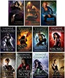 The Otherworld Collection Series Set 1-11 Sisters of the Moon (#1 Witchling, #2 Changeling, #3 Darkling, #4 Dragon Wytch, #5 Night Huntress, #6 Demon Mistress, #7 Bone Magic, #8 Harvest Hunting, #9 Blood Wyne, #10 Courting Darkness, #11 Shaded Vision)