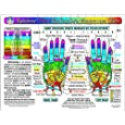 Rainbow HAND Reflexology/ Acupressure Massage Chart