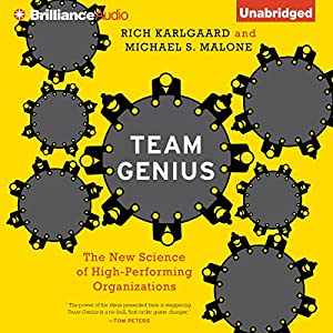 Team Genius Audiobook