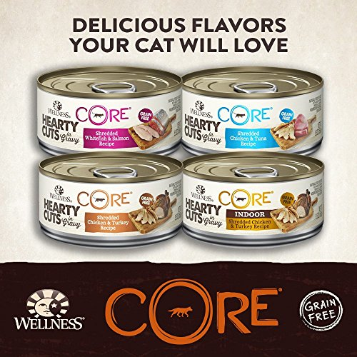 Wellness Core Canned Cat Food Indoor