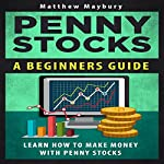 Penny Stocks: A Beginner's Guide to Penny Stocks | Matthew Maybury