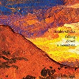 Tindersticks - Falling Down The Mountain