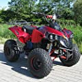 Kids Electric Quad S-10 1000 Watt Miniquad Metallic Red