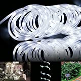 LE® 16.5ft LED Solar Rope Lights, Waterproof, 50 LEDs, 1.2 V, White, Portable, with Light Sensor, Outdoor Rope Lights, Ideal for Christmas, Wedding, Party