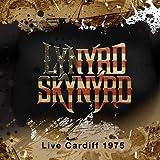 LIVE CARDIFF 1975 Lynyrd Skynyrd