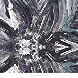 Instrumentals By Flying Saucer Attack (2015-07-17)