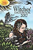 img - for Llewellyn's 2017 Witches' Datebook book / textbook / text book