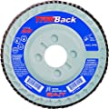 SAIT 70912 Trim Back Flap Disc with 4-1/2-Inch Diameter and 5/8-11-Inch Arbor, 10-Piece
