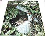 Birds of North America: 2 (0525066985) by Porter, Eliot