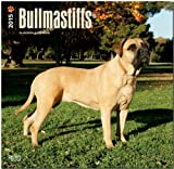 BrownTrout Publishers Ltd. Bullmastiffs 2015 Wall Calendar
