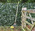 Artificial Screening - Ivy Hedge