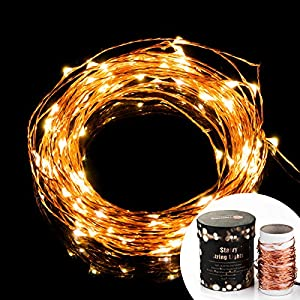 TaoTronics TT-SL032 Indoor and Outdoor Led String Lights Waterproof 100 LED Warm White Color on Copper Wire 33ft LED Starry Light with CE certified 5v Power Adapter For Christmas Wedding and Party(Both Led light and Adapter are WaterProof)