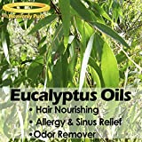Eucalyptus Essential Oil - HUGE 4 OZ / Dropper - 100% Pure Therapeutic Grade - Eucalyptus Oil is Great for Aromatherapy, Colds & Flus, Hair Nourishment, Sinus & Allergies, Mosquito Repellent & More!