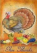 Give Thanks Thanksgiving Turkey Fall Harvest Pumpkin Garden Flag 12