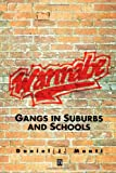 Wannabe: Gangs in Suburbs and Schools