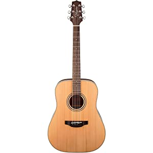 Takamine GD20-NS Dreadnought Acoustic Guitar review