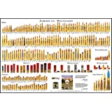 American Standard - Bullet Poster (Cartridge Comparison)