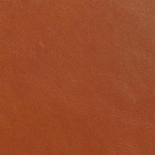 Imagen de Amazon Kindle Touch Funda de cuero, una silla Tan