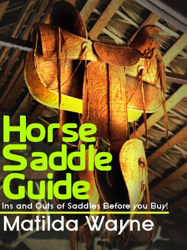 Horse Saddle Guide - Ins and Outs of Saddles Before you Buy!