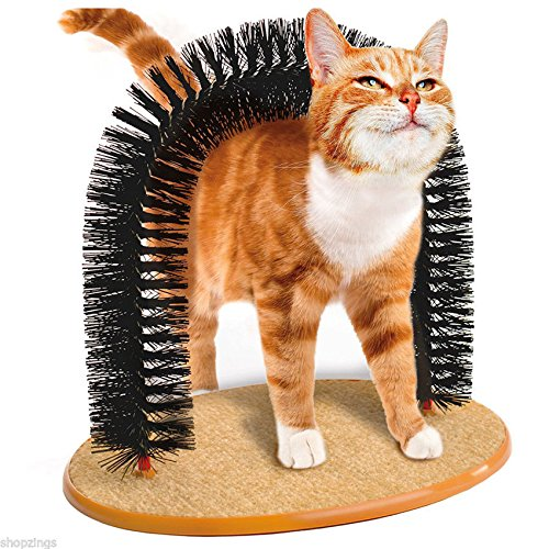 the-best-purrfect-arch-self-groomer-with-bag-of-catnip-cat-grooming-arch-1