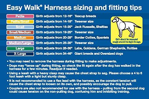 easy walk dog harness instructions