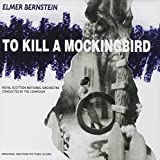 to kill a mocking bird cliff Get an answer for 'what are some examples of courage from to kill a mockingbird by harper lee' and find homework help for other to kill a mockingbird questions at enotes.