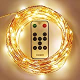 FOXNOV Waterproof 33Ft 100 LED Copper Fairy String Lights, Warm White, IR Receiver&Power Adapter 2 in 1