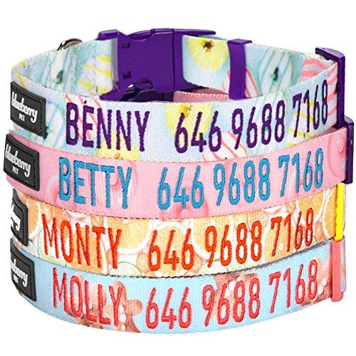blueberry-pet-collier-pour-chien-motif-donut-personnalisation-brode-pour-chien-avec-nom-et-numero-de