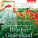 Little Mercies Audiobook by Heather Gudenkauf Narrated by Kate Rudd, Tanya Eby