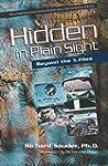 Hidden in Plain Sight: Beyond the X-F...