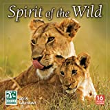 img - for The Spirit of the Wild National Wildlife Federation 2015 Wall Calendar book / textbook / text book