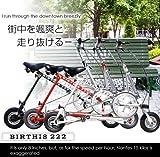 バースィズ BIRTHIS 222 (ブラック)