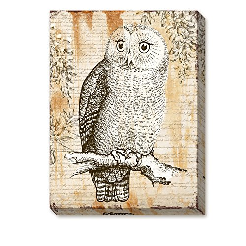 """ArtKisser Owl Painting on Canvas Owls in Tress Framed Ready to Hang for Bedroom Decoration 12""""x16"""""""