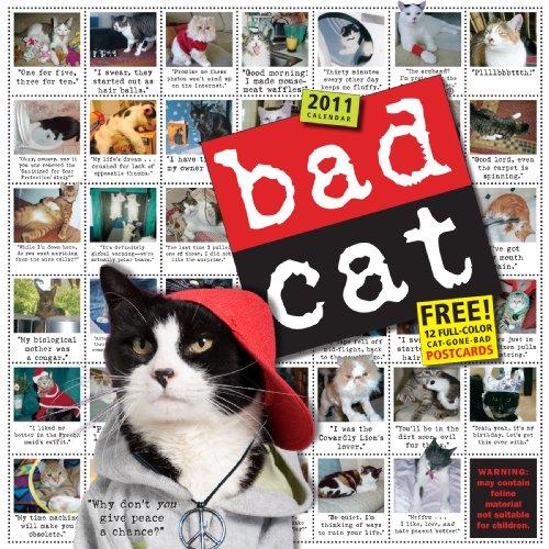 Bad Cat Wall Calendar 2011