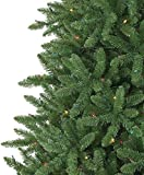 Tree-Classics-St-Charles-Spruce-Artificial-Christmas-Tree-6-Feet-Prelit-Color-Changing-LED-Lights