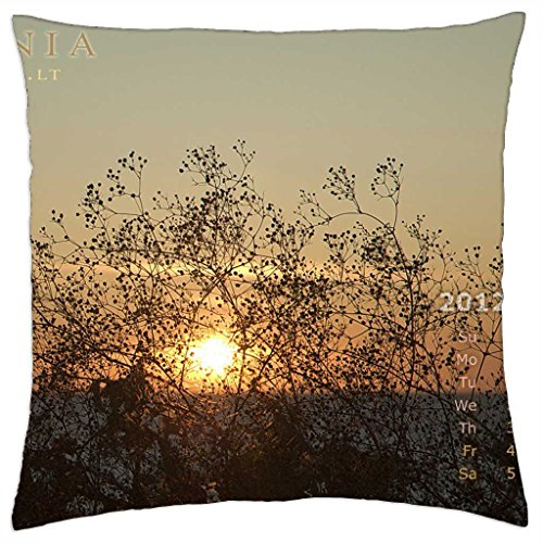 a-fan-of-sand-flowers-for-sun-throw-pillow-cover-case-18-x-18