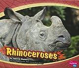 Rhinoceroses (Asian Animals)