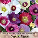 "60 Flower Seeds, Hollyhock ""Halo Mixture"" (Alcea rosea) Seeds By Seed Needs"