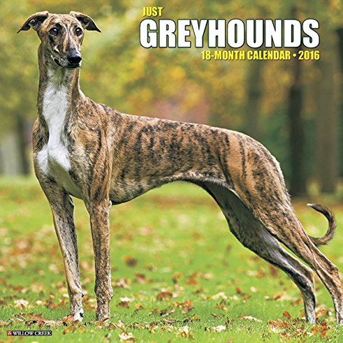 2016 Just Greyhounds Wall Calendar
