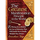 The Greatest Manifestation Principle in the World ~ Carnelian Sage