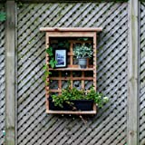Algreen 34003 Garden View, Vertical Living Wall Planter and Decorative Shelving Unit