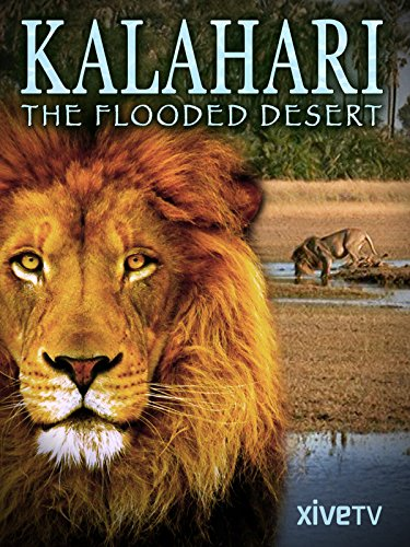 Kalahari: The Flooded Desert