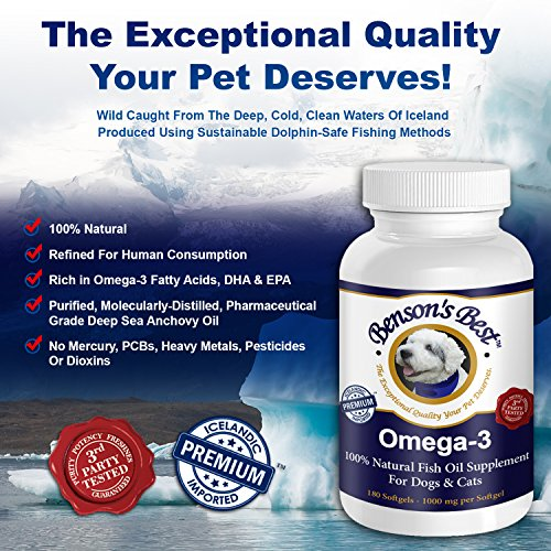 Benson 39 s best omega 3 fish oil for dogs provides 43 for Dog food with fish oil