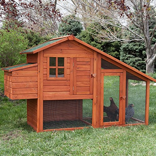 Boomer & George Boomer & George Deluxe Chicken Coop, Natural, Wood, 76L x 28.75D x 44.25H inches