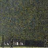 Vitalwalls Landscape Painting (Landscape-067-60, Canvas Print, 60 Cm X 60.2 Cm)